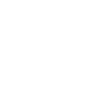 The New York Performing Arts Academy